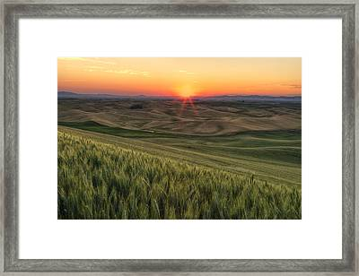 Palouse Sunrise Framed Print by Mark Kiver