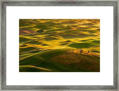 Framed Print featuring the photograph Palouse Swells by Dan Mihai