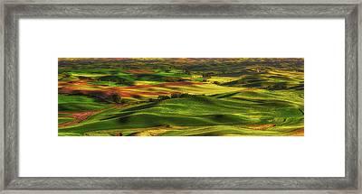 Palouse Framed Print