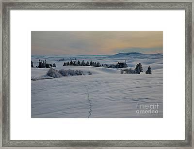 Palouse Tracks Framed Print by Idaho Scenic Images Linda Lantzy