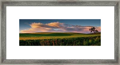 Framed Print featuring the photograph Palouse Tree Of Life by Dan Mihai