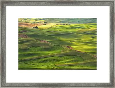 Framed Print featuring the photograph Palouse Views by Patricia Davidson