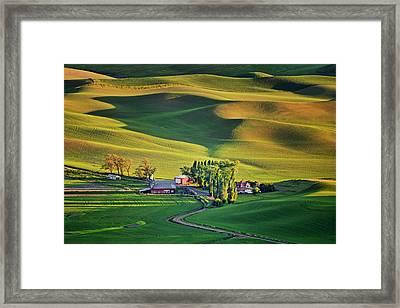 Palouse - Washington - Farms - 7 Framed Print