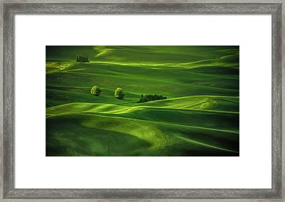 Palouse Waves Framed Print by Don Schwartz