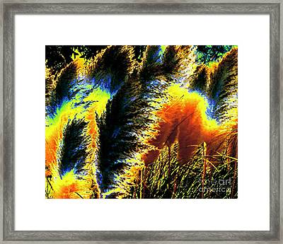 Pampas Grass 1 - Digital Art Framed Print by Merton Allen