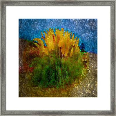 Framed Print featuring the photograph Pampas Grass by Iowan Stone-Flowers