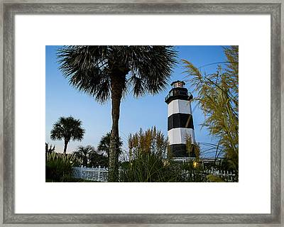 Pampas Grass, Palms And Lighthouse Framed Print
