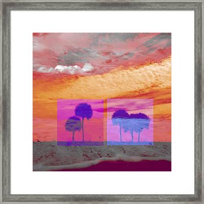 Palm Trees Framed Print by Gilberto Salazar