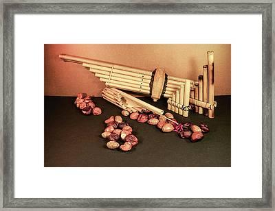 Pan Pipes And Buckeye Seeds Framed Print by Douglas Barnett