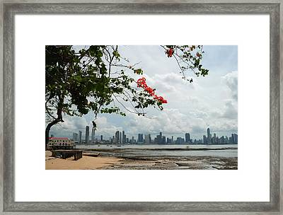 Panama City Downtown Framed Print by Iris Greenwell