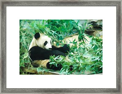 Framed Print featuring the painting Panda 1 by Lanjee Chee