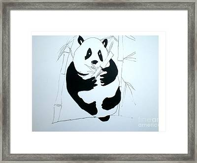 Panda Bear And Bamboo Framed Print by Hal Newhouser