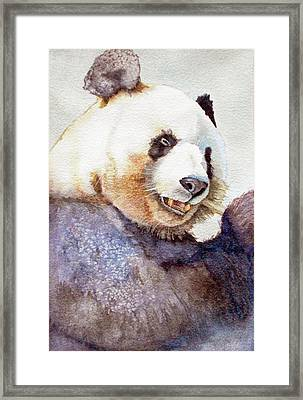 Panda Eating Framed Print