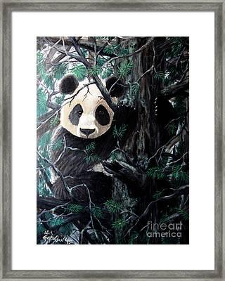 Panda In Tree Framed Print