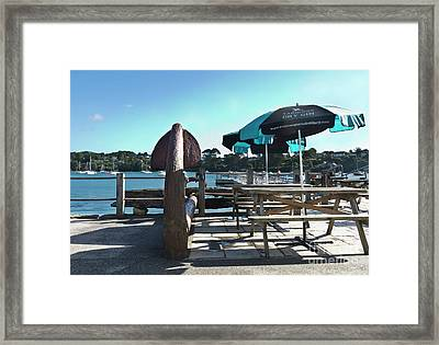 Pandora Anchor Framed Print by Terri Waters
