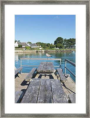 Pandora Pontoon Framed Print by Terri Waters