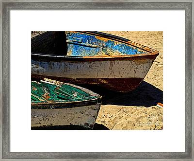 Pangas With Green And Blue Framed Print by Mexicolors Art Photography