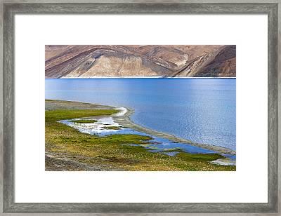 Pangong Tso, Ladakh, 2005 Framed Print