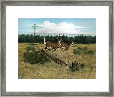 Panhandle Deer Framed Print by Timothy Tron