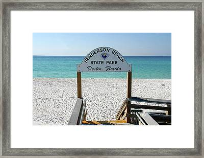 Panhandle Jewel Framed Print by David Lee Thompson
