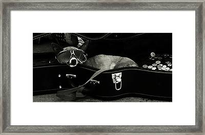 Panhandling Dog Framed Print by Julie Niemela