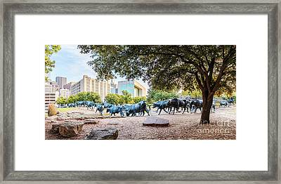 Panorama Of Cattle Drive At Pioneer Plaza In Downtown Dallas - North Texas Framed Print by Silvio Ligutti