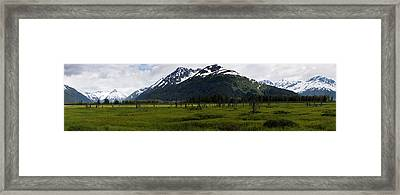 Panorama Of Green Meadow Framed Print