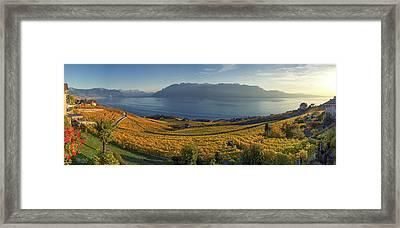 Panorama On Lavaux Region, Vaud, Switzerland Framed Print