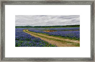 Panoramic Of Muleshoe Bend Framed Print