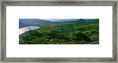 Panoramic View Of Goats Grazing Framed Print