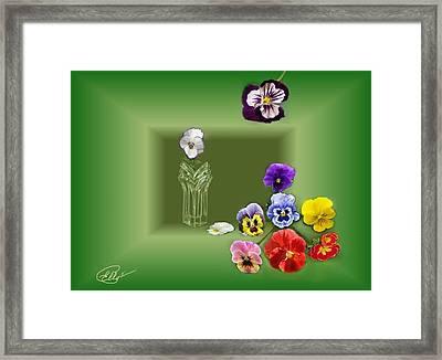 Pansies  Framed Print