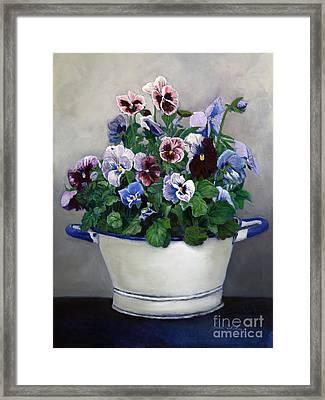 Pansies Framed Print by Enzie Shahmiri