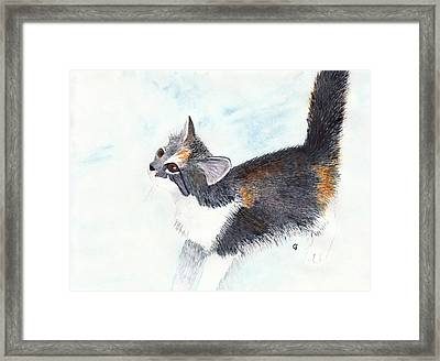 Calico Barn Cat Watercolor Framed Print