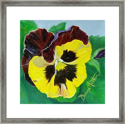 Pansy No. Ten Framed Print