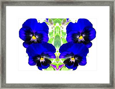 Framed Print featuring the photograph Pansy Pattern by Marianne Dow