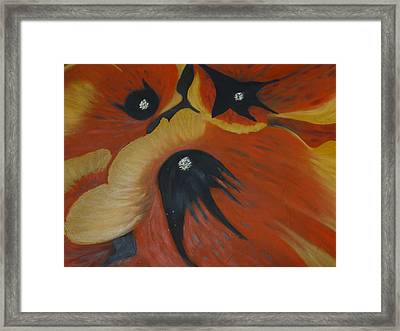 Pansy Pup Framed Print by Dawn Hay
