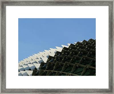 Pantern Framed Print