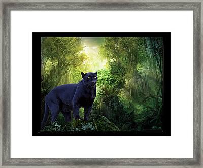 Panther Alert Framed Print