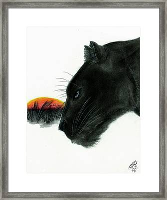 Panther At Dusk Framed Print by Tiphanie Erickson