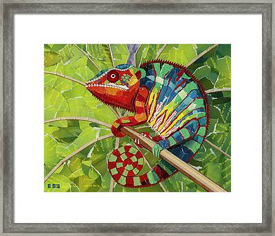Panther Chameleon Framed Print by Shawna Rowe