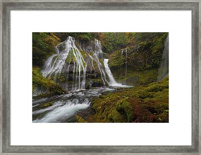 Panther Creek Falls In Autumn Framed Print by David Gn