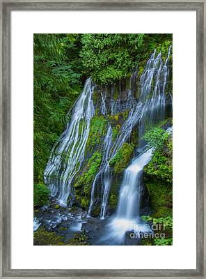 Panther Creek Falls Summer Waterfall 1 Framed Print