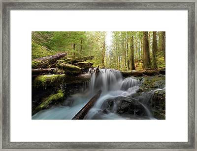 Panther Creek In Gifford Pinchot National Forest Framed Print by David Gn