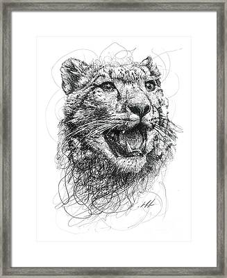 Leopard Framed Print by Michael Volpicelli