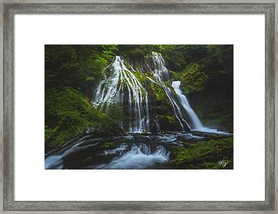 Panther Mist Framed Print by Peter Coskun