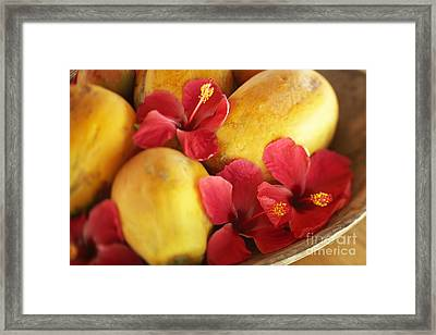Papaya Fruit And Hibiscus Framed Print by Kyle Rothenborg - Printscapes