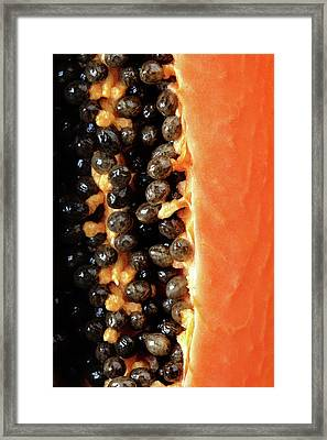 Papaya Fruit Halved Macro Framed Print