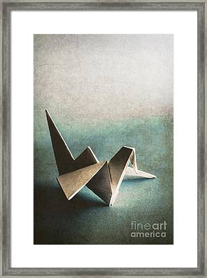 Paper Bird On Abstract Background Framed Print by Jorgo Photography - Wall Art Gallery