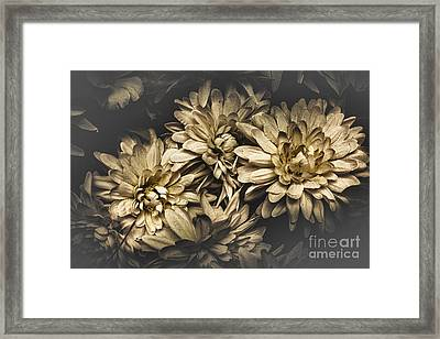 Framed Print featuring the photograph Paper Flowers by Jorgo Photography - Wall Art Gallery