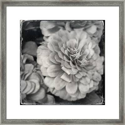 Paper Mache Framed Print
